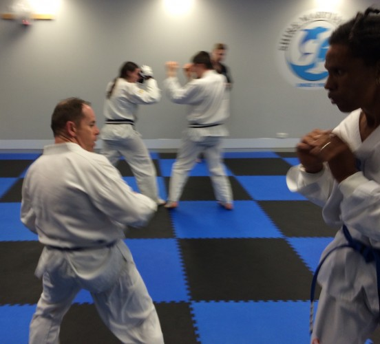 Adult sparring action